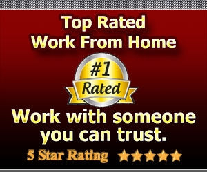 Top rated work from home