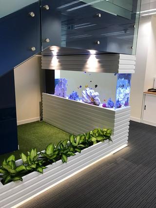ICC 國際企業海水魚缸