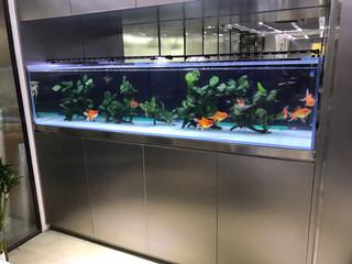 高級辦公室接持處魚缸