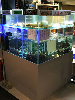 Seafood Tank for restaurants