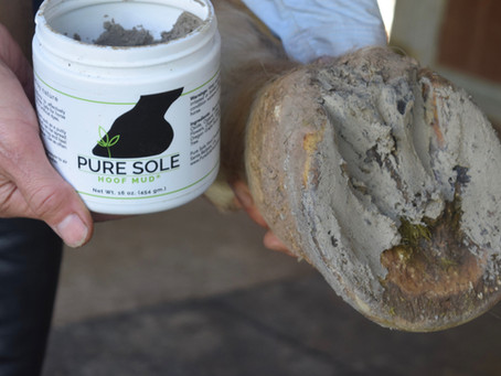 Get to know Pure Sole Hoof Mud