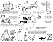 Shark Products.png