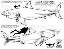 Shark Guardian Bookmark.jpg