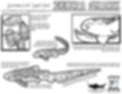 Zebra Shark info.png