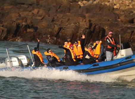 Shark Guardian Diver Internship Program – SOUTH AFRICA