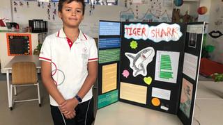 Student competition winner Dubai 2020