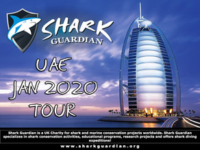 Dubai and Abu Dhabi School Tour 2020