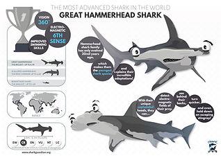 Great Hammerhead Shark Poster