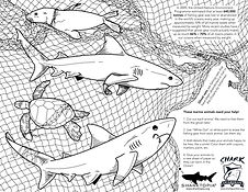 Shark Guardian Ghost Net Activity Page.j