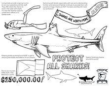 Sharks worth.png