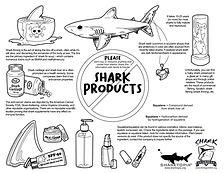SG-SharkProducts.jpg