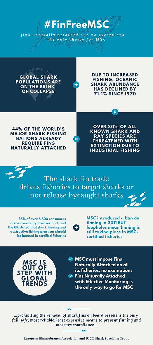 Infographic-FinFreeMSC.jpg