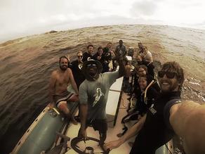 Dive Center Feature: Liquid Dive Adventures