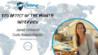 August Eco-Artist: Janet, Curb Beach Plastic