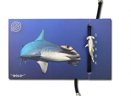 New Hammerhead Shark Bracelet!