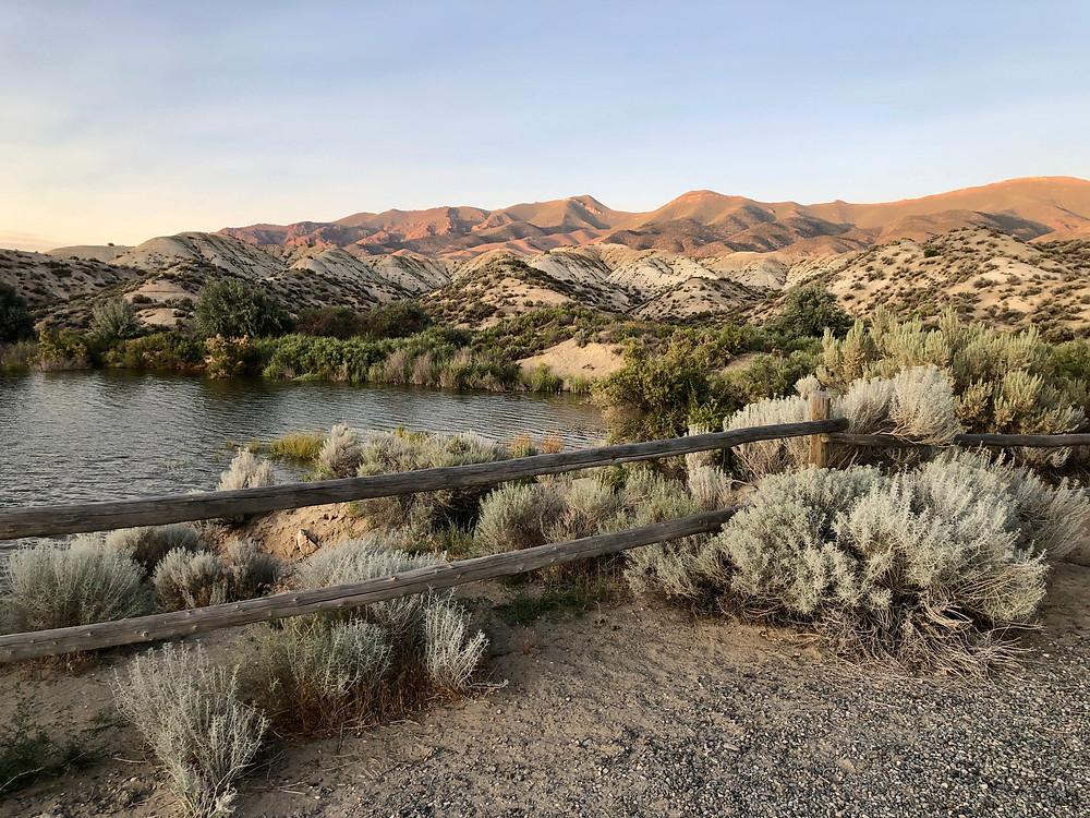 Sage Scrub, Nevada