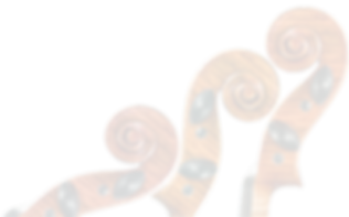 violin-blur-shadow_edited_edited.png