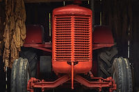 Red tractor grill