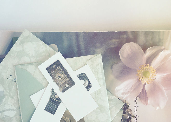 Pink flower, camera images, a butterly necklace on a faded magazine.