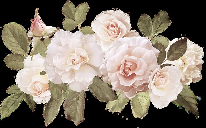 Deanna Dusbabek Photography vintage white roses