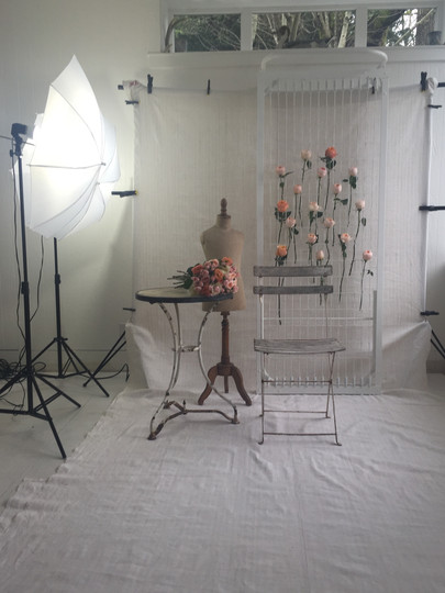 Deanna Dusbabek Photography styled session vignette.