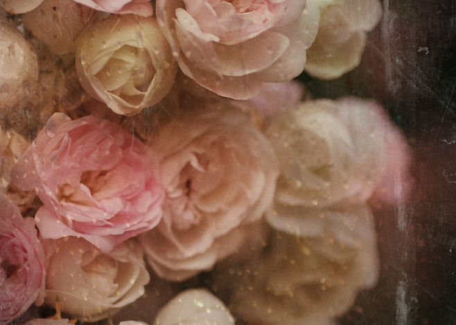 Pink, white and pale yellow vinage roses.