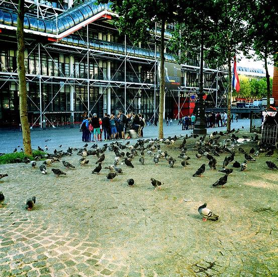 Paris Beaubourg Pigeons et enfants