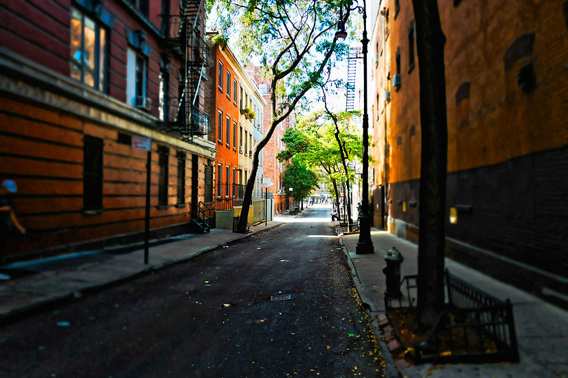 New York 008
