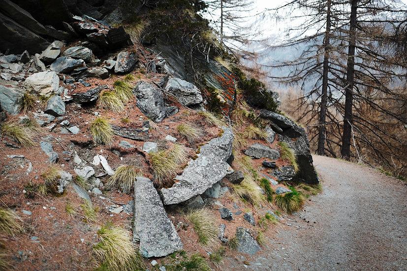 Zermatt gris vert rouge