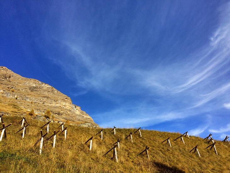 Zermatt piquets