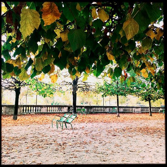 Paris chaises tuilerie