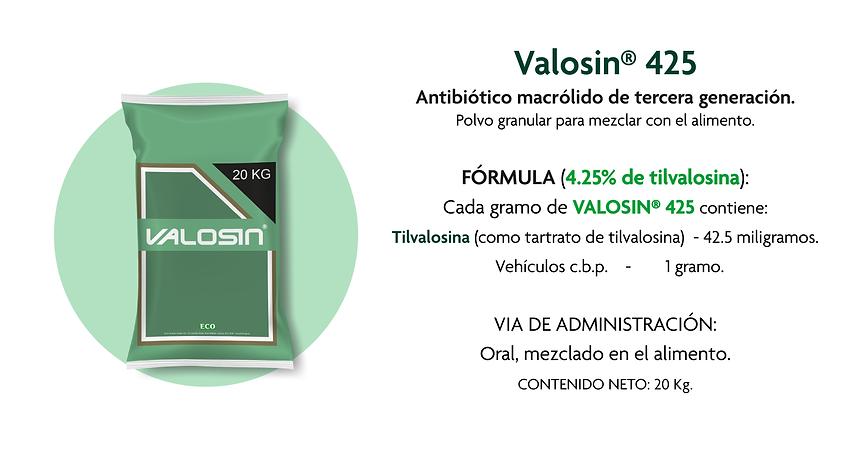 Artes Vision Porcina_08 Valosin 425.png