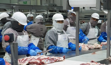 Impulsan Agricultura e industria cárnica estrategia para  exportación de cárnicos frescos a China.