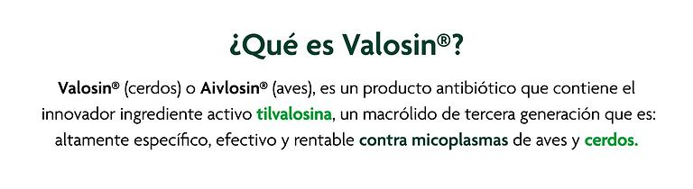 Artes Vision Porcina_03 ¿Qué es Valosin-.png