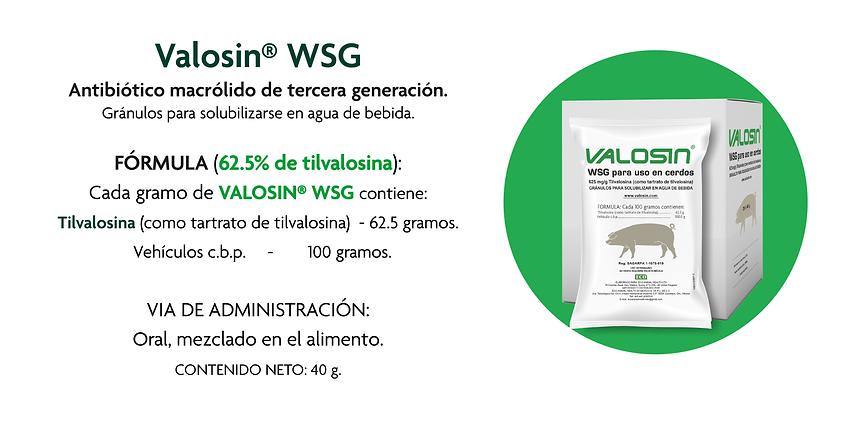 Artes Vision Porcina_09 Valosin WSG.png