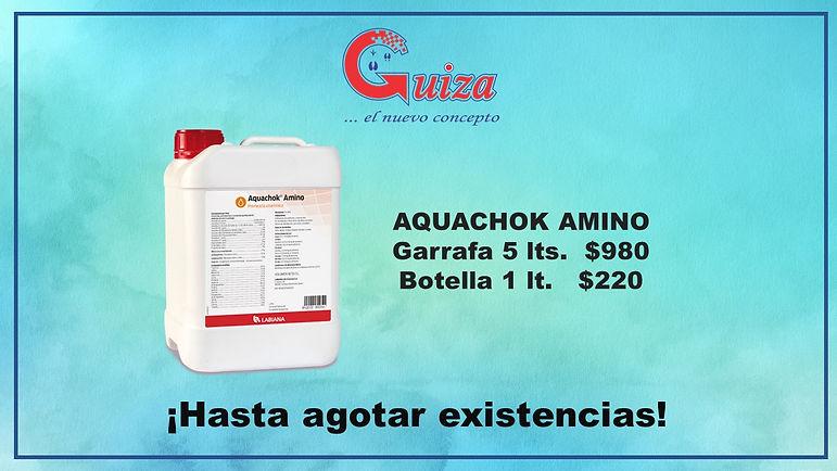 Promoción_Guiza.jpg