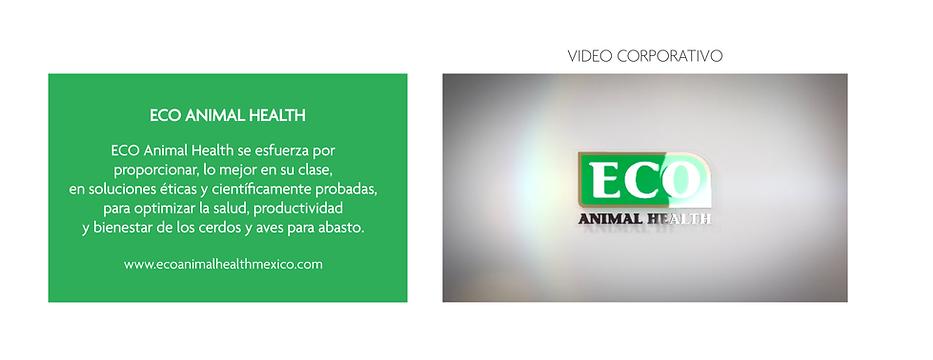 Artes Vision Porcina_01.1 Video corporativo.png