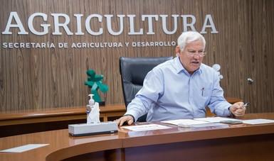 Analizan Agricultura, FAO e IICA medidas para optimizar el comercio de productos agropecuarios.