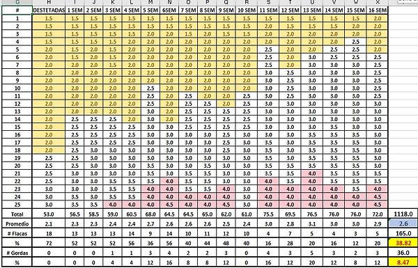 tabla pt 20.jpg
