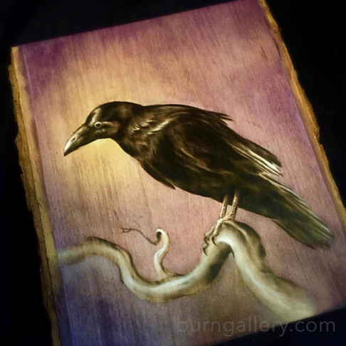 raven-small_orig.jpg