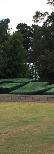 GWA Hedge