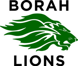 Borah Lions
