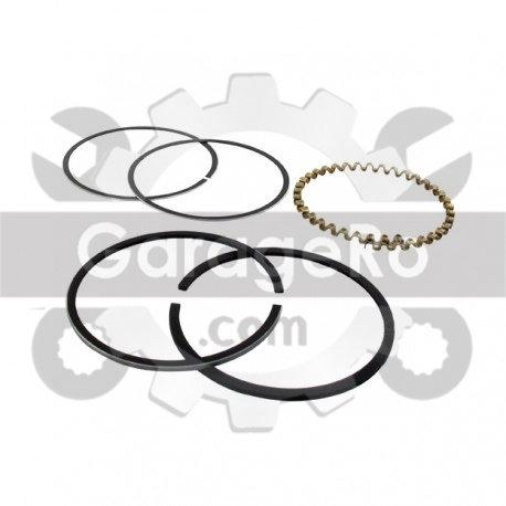 Segmenti generator BRIGGS&STRATTON 170000, 171000, 190000-196000. 7 + 8 CP