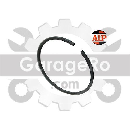 Segment 36 mm x 1.5 mm AIP
