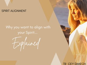 Why You Want To Align With Your Spirit