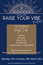 Raise Your Vibe Bootcamp