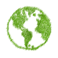 green-1968582_1280.png