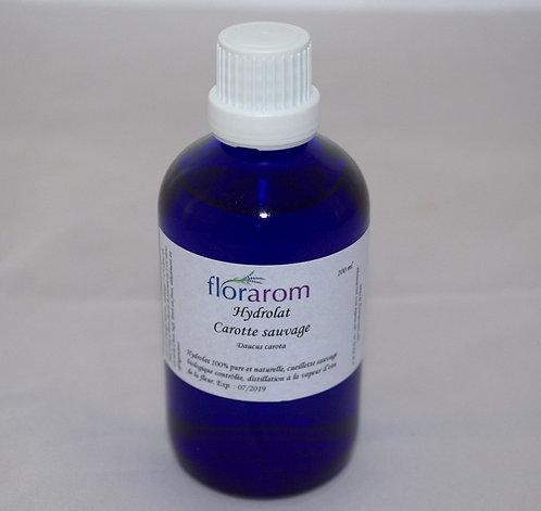 Hydrolat Carotte sauvage bio
