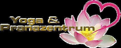 Y&PZentrum Logo neu schmaler Rand.png