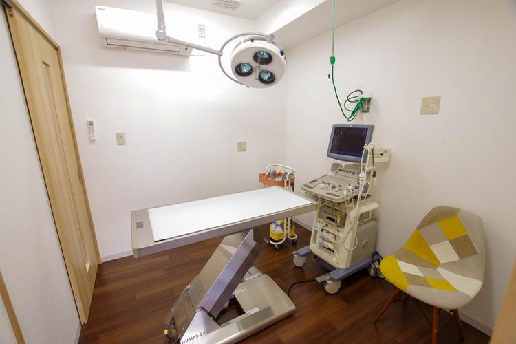 いぬ診察室